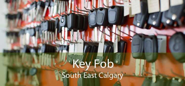 Key Fob South East Calgary